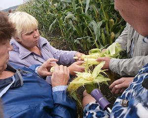 Деньги на исследования в сельском хозяйстве